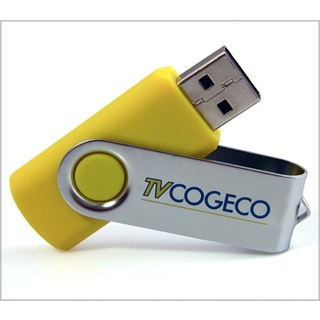 PJL-3338 Clé USB - plastique et pivot en métal